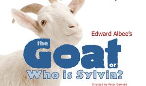 Goat3002