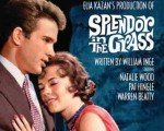 BENEFIT: SPLENDOR IN THE GRASS – AND UNDER THE STARS